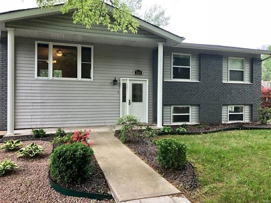Residential, Bi-level - Edwardsville, IL (photo 1)