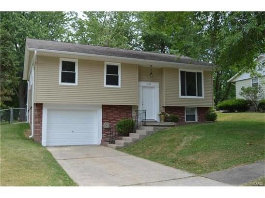 Residential, Bi-level - Godfrey, IL (photo 1)