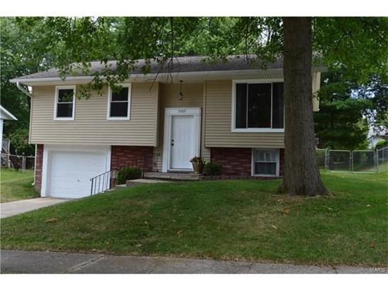 Residential, Bi-level - Godfrey, IL (photo 2)