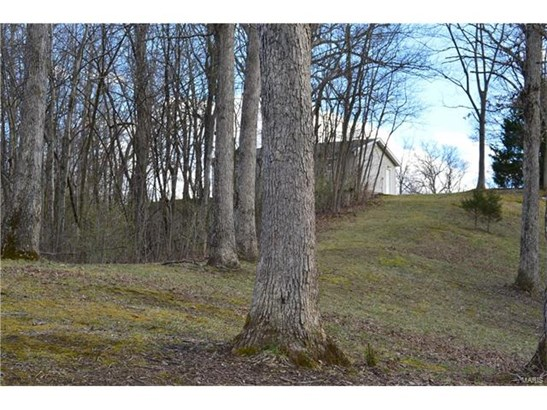 Other,Residential Lots, Other - Brighton, IL (photo 2)