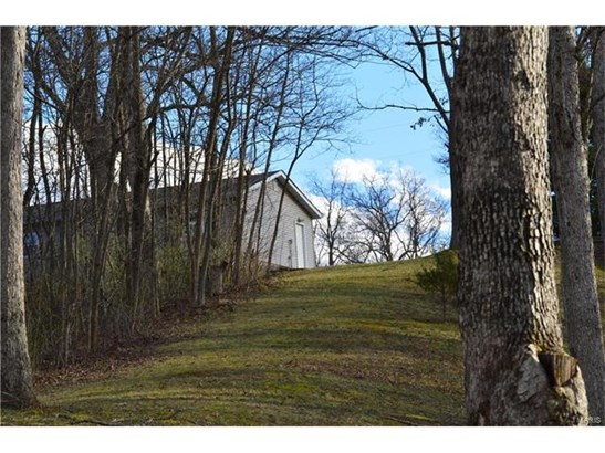 Other,Residential Lots, Other - Brighton, IL (photo 3)