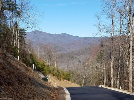 19 Old Greybeard Loop, Black Mountain, NC - USA (photo 1)