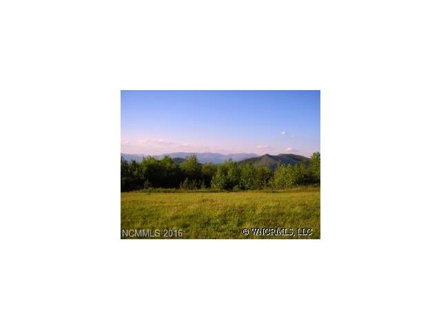 Lot 336  Ebby Ridge None, Fairview, NC - USA (photo 2)