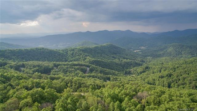 1300 Elk Mountain Scenic Highway, Asheville, NC - USA (photo 1)