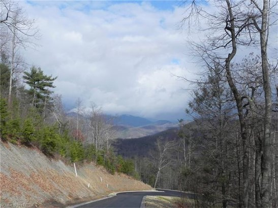 19  Old Greybeard Loop, Black Mountain, NC - USA (photo 2)