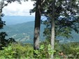 1300  Elk Mountain Scenic Highway, Asheville, NC - USA (photo 1)