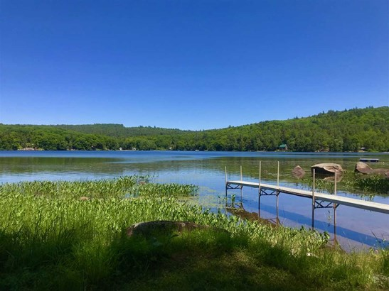 Cottage/Camp,Rehab Needed, Single Family - Rumney, NH
