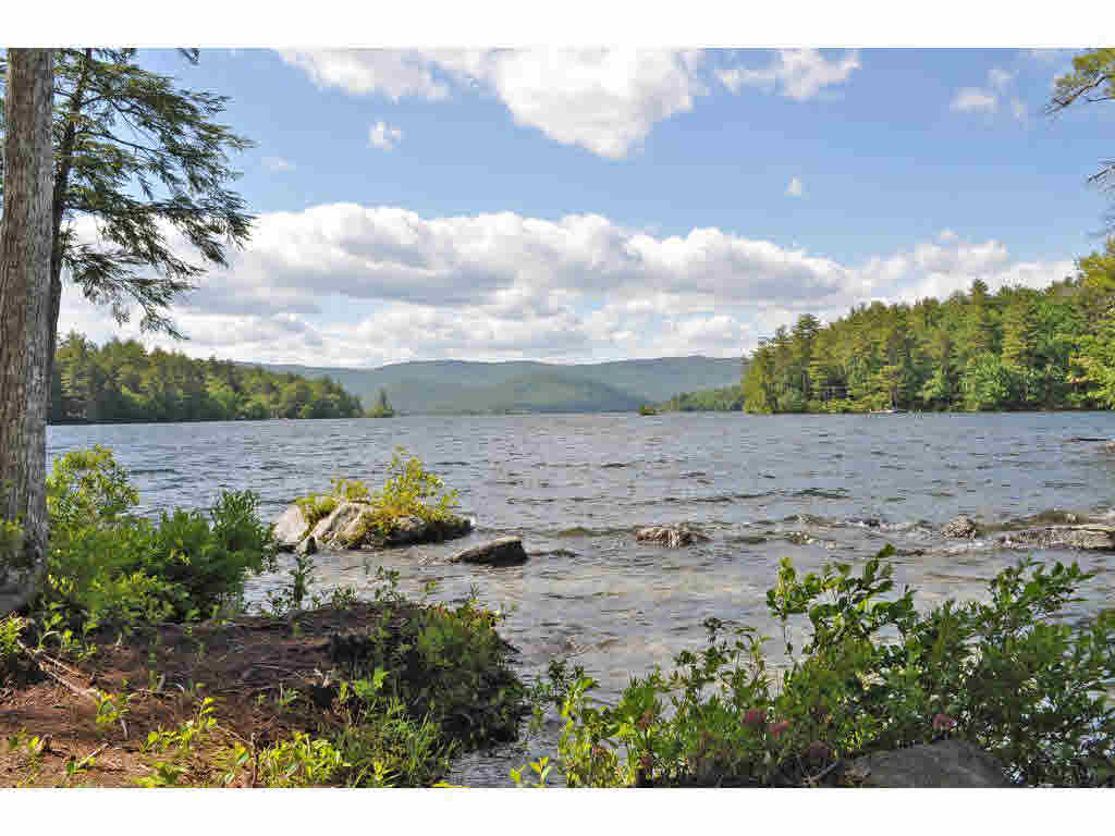 Single Family, Contemporary,Log - Moultonborough, NH (photo 2)