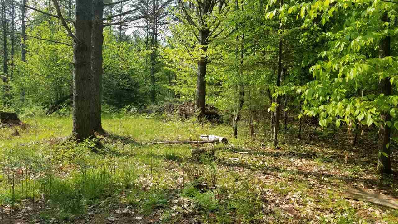 Land - Lyman, NH (photo 2)