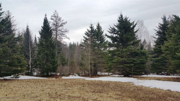 Land - Whitefield, NH (photo 4)