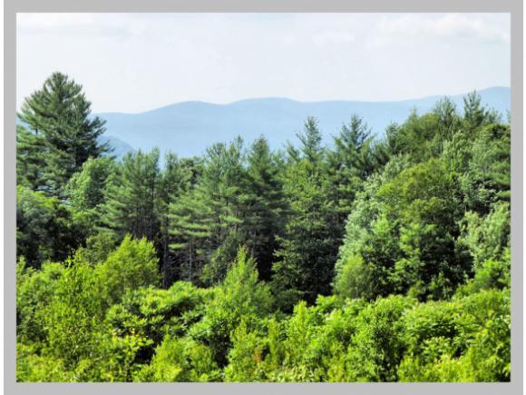 Land - Plymouth, NH (photo 5)