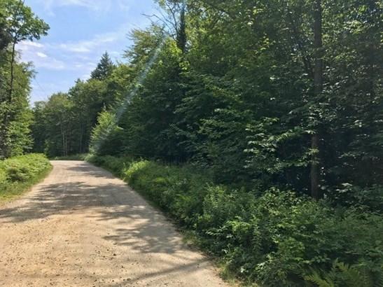 Land - Rumney, NH (photo 2)