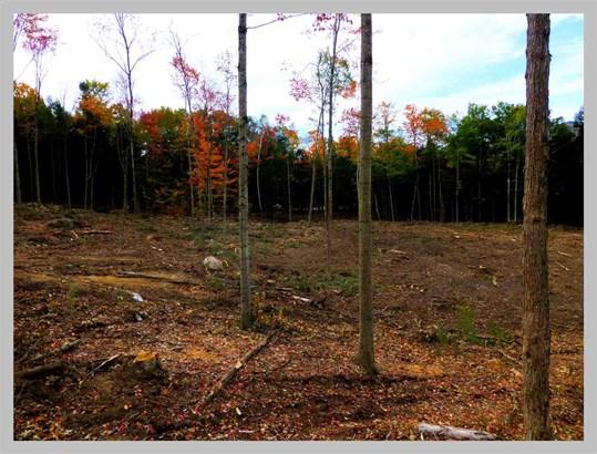 Land - Thornton, NH (photo 2)