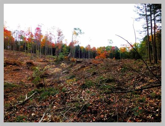 Land - Thornton, NH (photo 3)