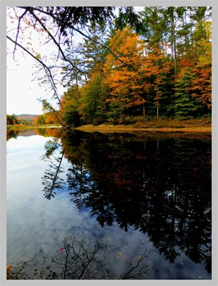 Land - Thornton, NH (photo 5)