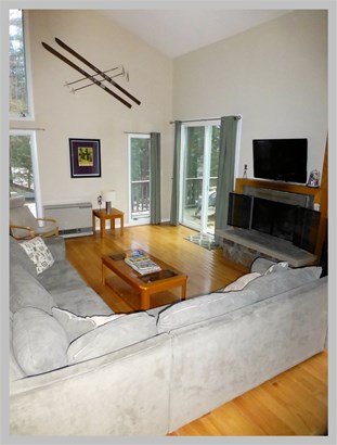 Contemporary,Multi-Level,Walkout Lower Level, Single Family - Campton, NH (photo 5)