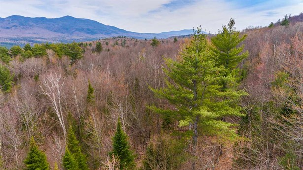 Land - Sugar Hill, NH (photo 2)