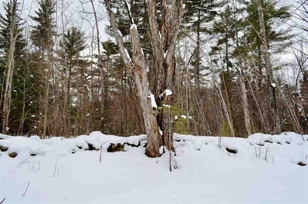 Land - Landaff, NH (photo 4)