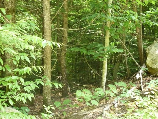 Land - Groton, NH (photo 1)