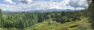 Cape, Single Family - Sugar Hill, NH (photo 5)