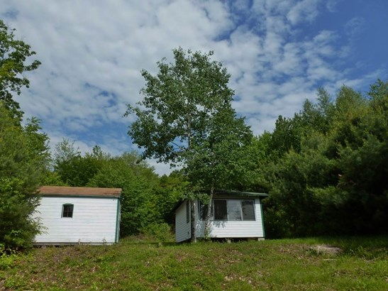 Cottage/Camp,Rehab Needed, Single Family - Bristol, NH (photo 1)
