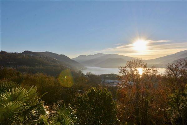 Muzzano - CHE (photo 2)