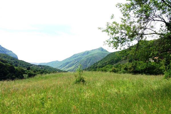 Arogno - CHE (photo 1)