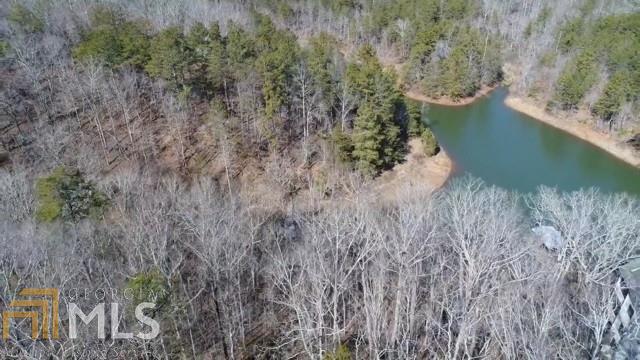 Land Lot - Dawsonville, GA (photo 4)