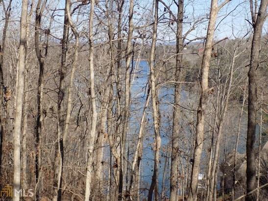 Land Lot - Dawsonville, GA (photo 5)