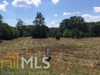 Land Lot - Martin, GA (photo 1)