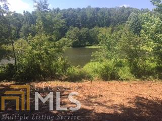 Land Lot - Martin, GA (photo 3)