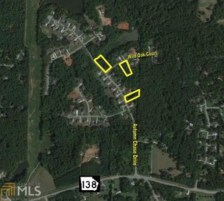 Residential Lot, Land Lot - Stockbridge, GA