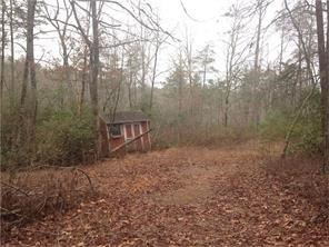 Acreage & Farm - Dawsonville, GA (photo 2)
