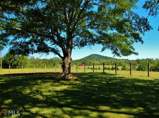 Acreage & Farm - Murrayville, GA (photo 4)