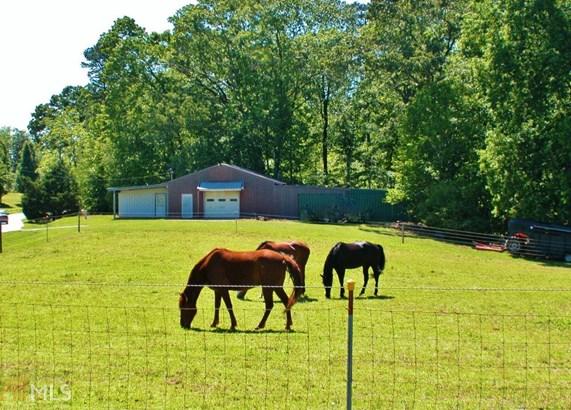 Acreage & Farm - Murrayville, GA (photo 5)