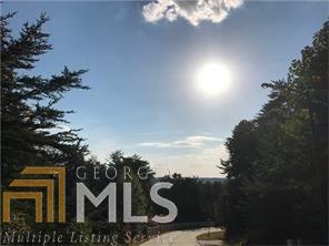 Land Lot - Dahlonega, GA (photo 3)