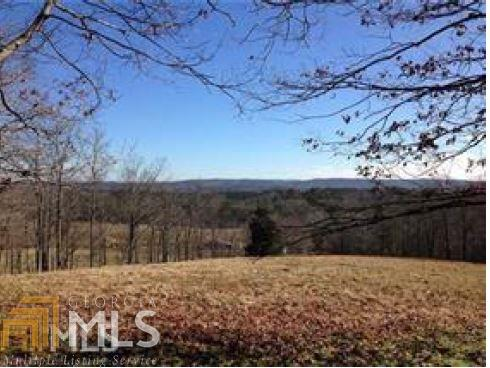 Acreage & Farm - Fairmount, GA (photo 1)