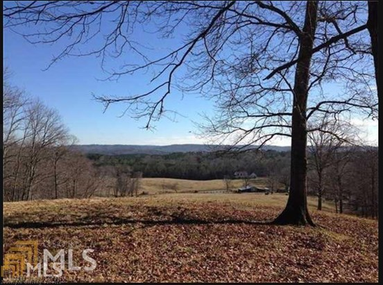 Acreage & Farm - Fairmount, GA (photo 2)
