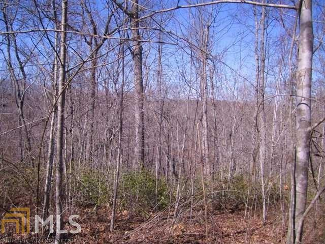 Land Lot - Gainesville, GA (photo 3)