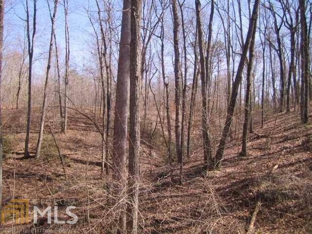Land Lot - Gainesville, GA (photo 4)
