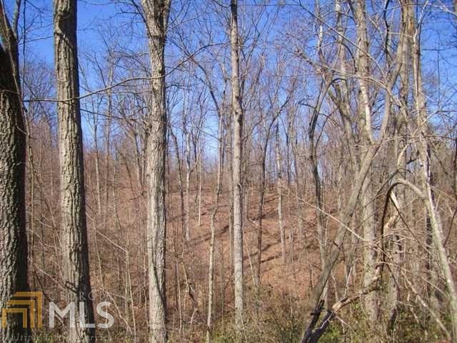 Land Lot - Gainesville, GA (photo 5)