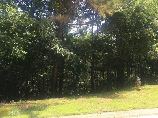 Land Lot - Flowery Branch, GA (photo 2)