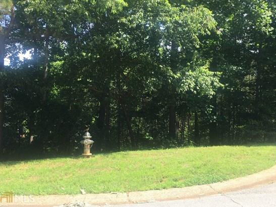 Land Lot - Flowery Branch, GA (photo 3)