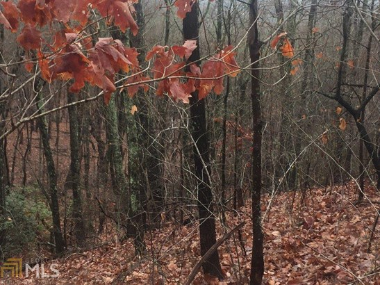 Land Lot - Cleveland, GA (photo 3)