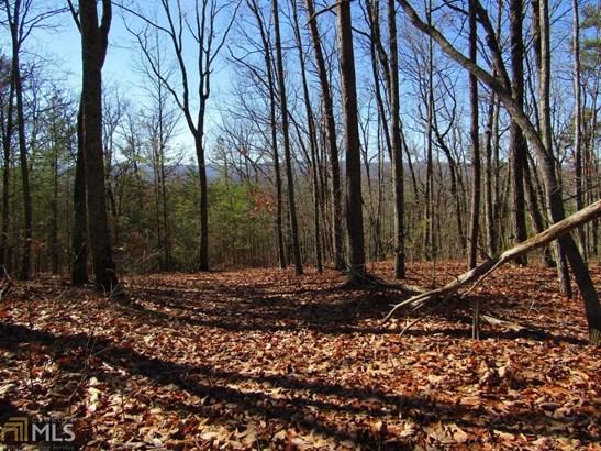 Land Lot - Dawsonville, GA (photo 2)