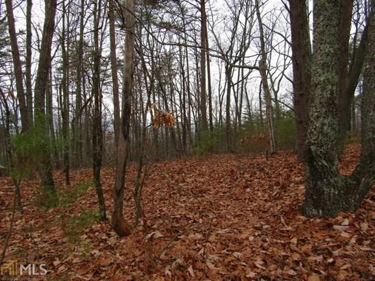 Land Lot - Dawsonville, GA (photo 3)
