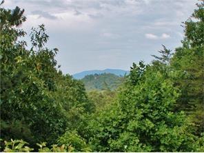 Single Family Detached, Ranch - Sautee Nacoochee, GA (photo 3)