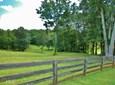 Acreage & Farm - Ball Ground, GA (photo 1)