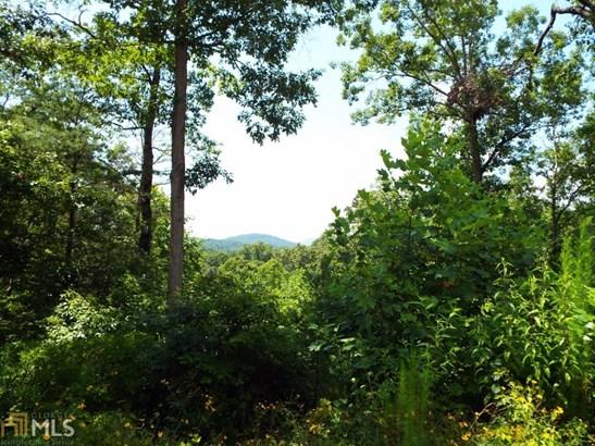 Land Lot - Demorest, GA (photo 2)
