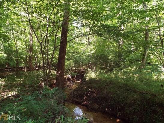 Land Lot - Demorest, GA (photo 3)